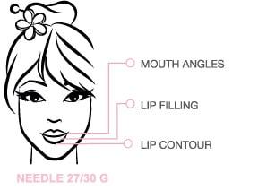 schema_impiego_lips_eng