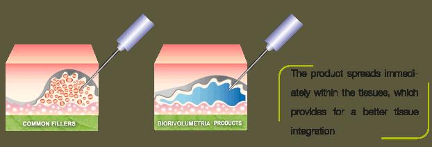 schema3 biorivolumetria eng